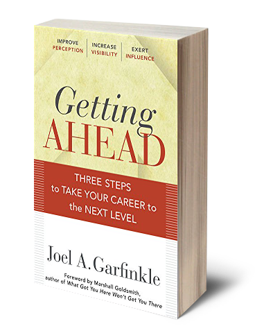 Book by Joel Garfinkle